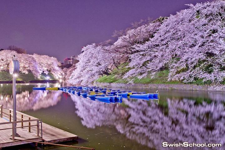 اليابان.. bntpal.com_142528319