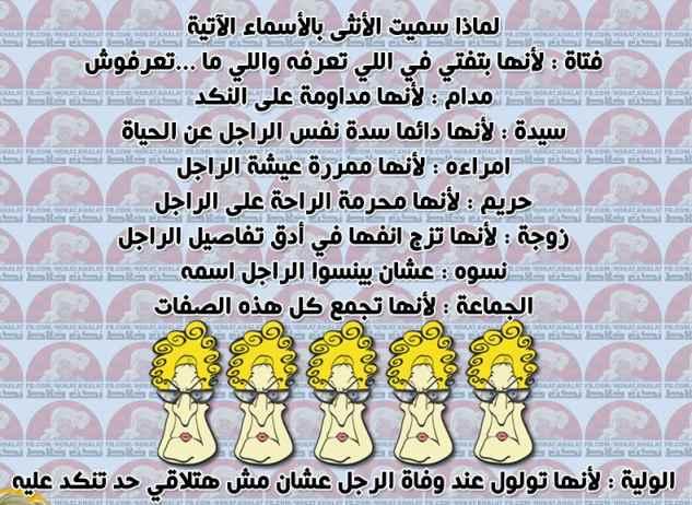 خمسة فرفشة bntpal.com_145132520