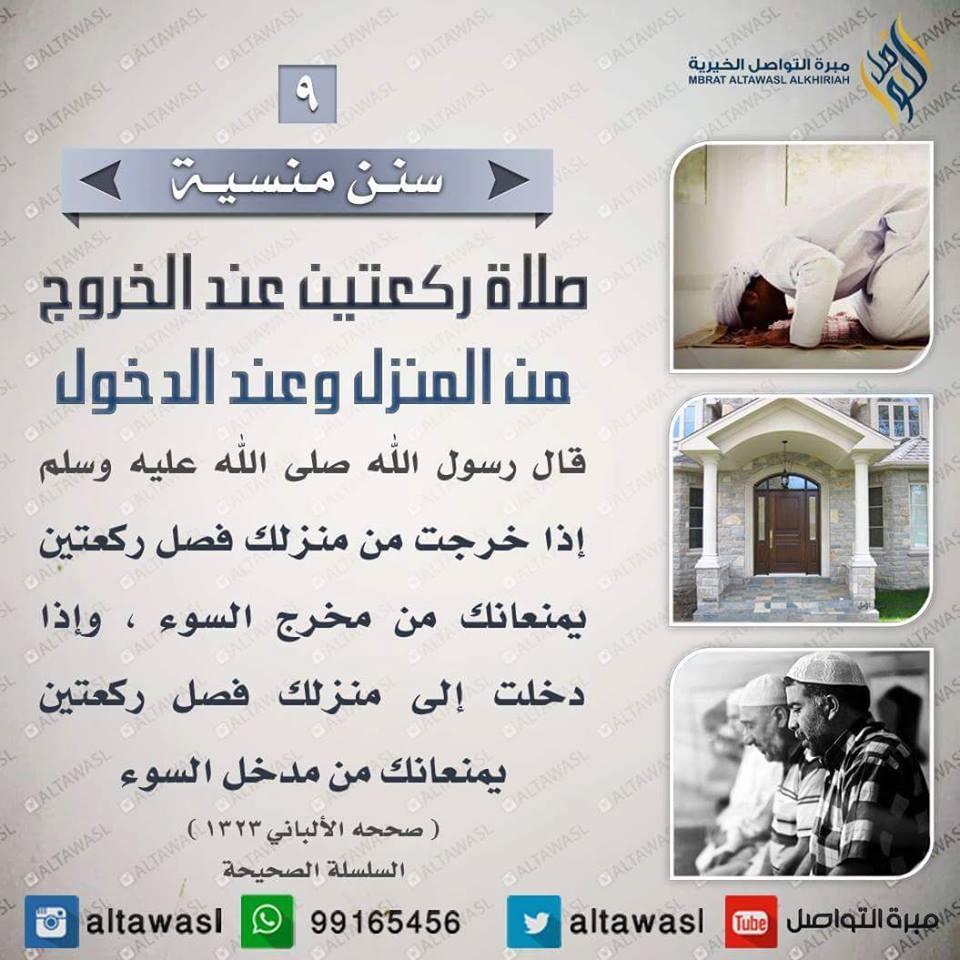 ����� �������� bntpal.com_145708608
