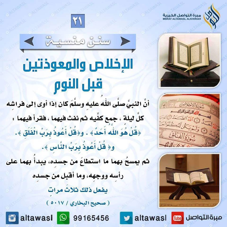 ����� �������� bntpal.com_145708624