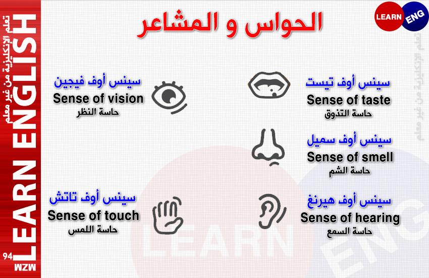 الدرس السادس الحواس المشاعر bntpal.com_146269725