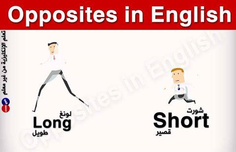 المتضادات باللغة الإنكليزية bntpal.com_147124602