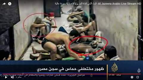 قناة الجزيرة تكشف مصير اثنين bntpal.com_147208015