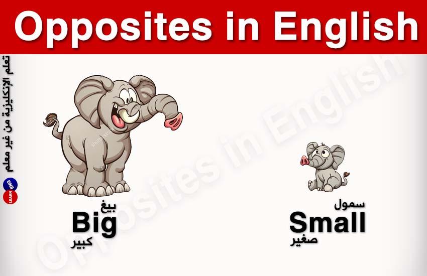 Opposites English المتضادات الإنكليزية bntpal.com_147323146