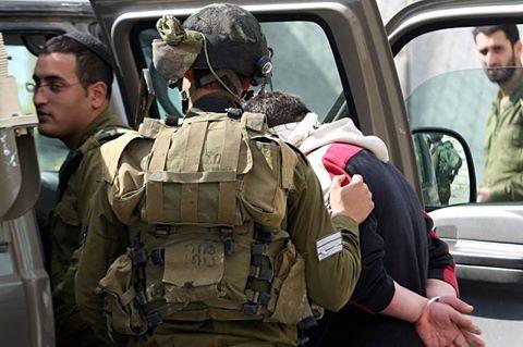 الاحتلال يعتقل ١٤ مواطنا الضفة bntpal.com_147331956