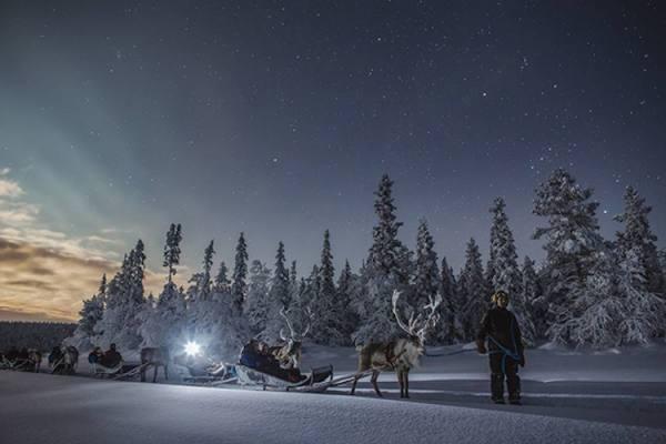 سحرية للشتاء الأضواء الشمالية فنلندا bntpal.com_148293734