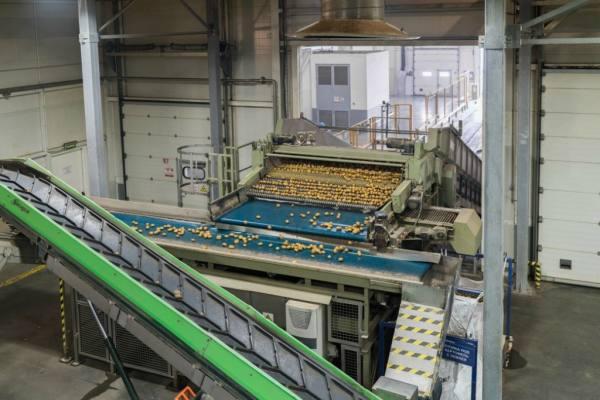 جولة داخل مصنع للشيبس bntpal.com_148614851