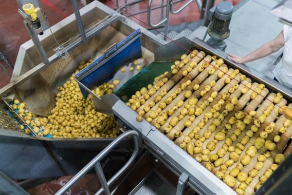 جولة داخل مصنع للشيبس bntpal.com_148614855