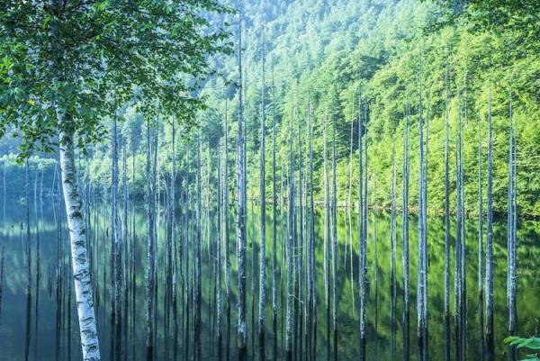 لإلتقاط الأنفاس طبيعة اليابان الخلابة bntpal.com_149306577