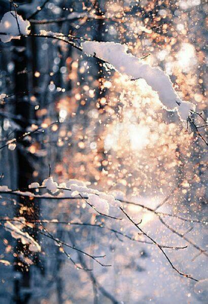 أنتطر الشتاء بفارغ الصبر .؟