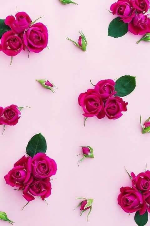 خلفيات للموبايل♡ bntpal.com_151946146