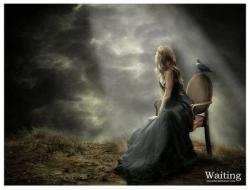 الصورة الرمزية lonesome dove