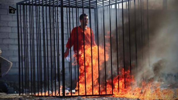 داعش تعدم معاذ كساسبة حرقًا.. bntpal_1422986126_38