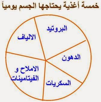 خمسة أغذية يحتاجها الجسم يوميا bntpal_1423459670_61