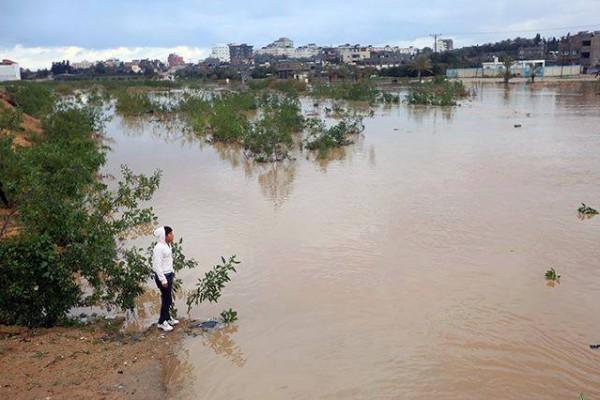 كارثة حقيقيه-غرق عشرات المنازل المغراقة bntpal_1424598058_23