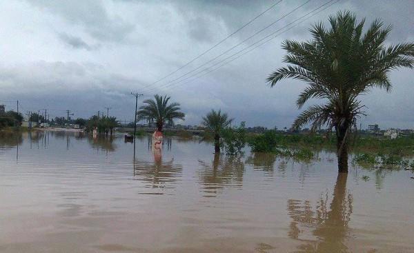 كارثة حقيقيه-غرق عشرات المنازل المغراقة bntpal_1424598061_23