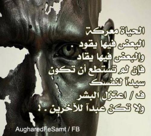 اجمل الحياة bntpal_1426500367_39