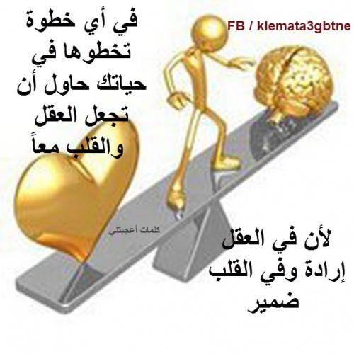 اجمل الحياة bntpal_1426500368_30