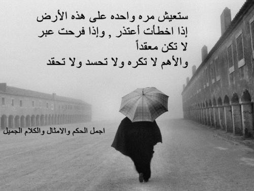 اجمل الحياة bntpal_1426500368_88