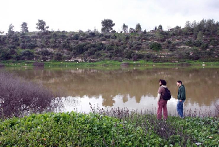 بركة مياه تتلون جبال القدس bntpal_1426791303_16