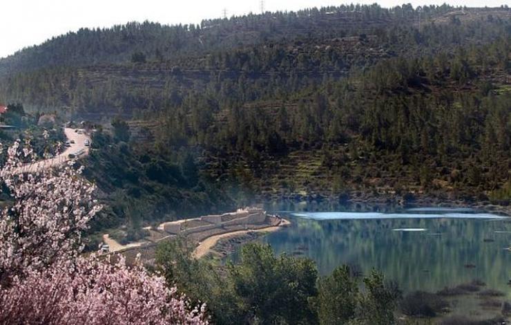 بركة مياه تتلون جبال القدس bntpal_1426791304_72
