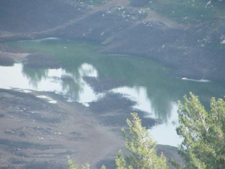 بركة مياه تتلون جبال القدس bntpal_1426791305_29