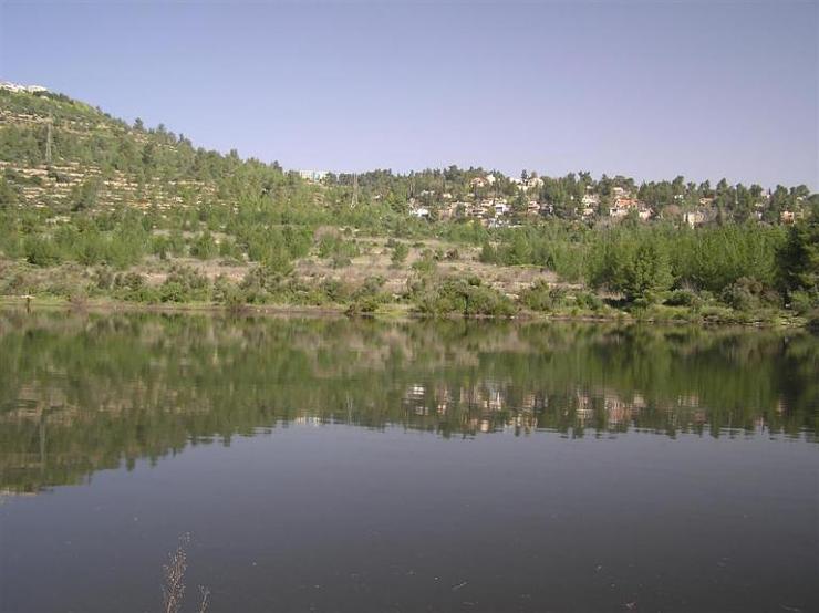 بركة مياه تتلون جبال القدس bntpal_1426791306_72