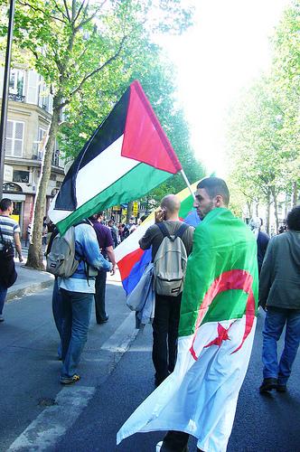 الجزائر فلسطين bntpal_1427372797_47