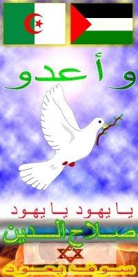 الجزائر فلسطين bntpal_1427372798_40