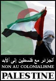 الجزائر فلسطين bntpal_1427372799_45
