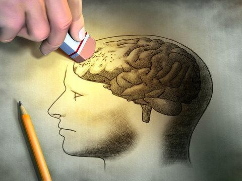 أنواع الدهون تسبّب الذاكرة bntpal_1428275869_56