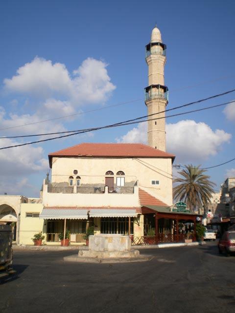 يافا عروس فلسطين2015 bntpal_1429177123_88