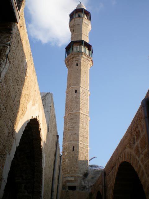 يافا عروس فلسطين2015 bntpal_1429177124_17