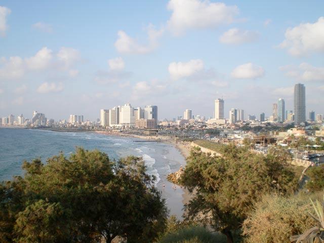 يافا عروس فلسطين2015 bntpal_1429177125_59