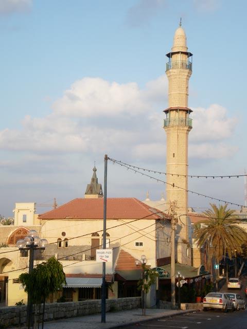 يافا عروس فلسطين2015 bntpal_1429177127_88