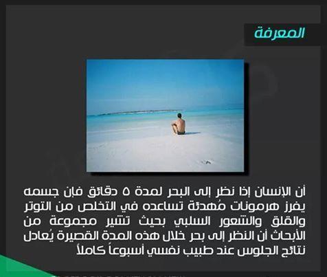 المعرفة معلومات مصورة bntpal_1433682955_60
