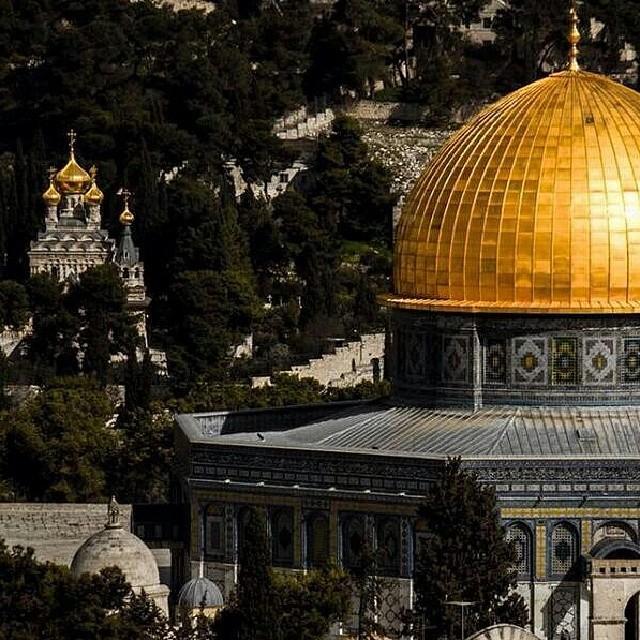 ♥خُلِقَ الحُبُ فلسطينياً bntpal_1433686600_45