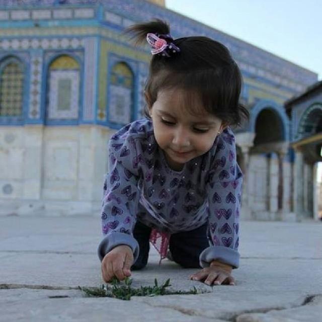 ♥خُلِقَ الحُبُ فلسطينياً bntpal_1433686606_65
