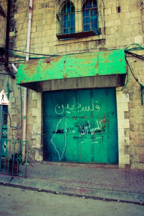 ♥خُلِقَ الحُبُ فلسطينياً bntpal_1433686614_95