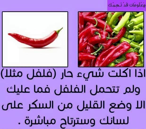 تعلم معلومات مصوره bntpal_1434141057_36