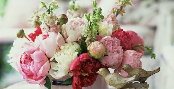 شخصيتك الورود التي تحبها bntpal_1434439431_41