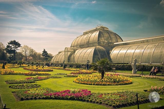 الحدائق الخضراء اللندنيه