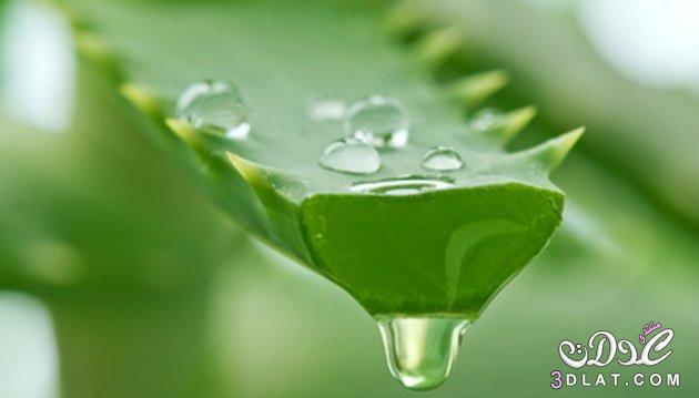 حلول لعلاج مشكلة الشعر الخفيف bntpal_1438512695_65