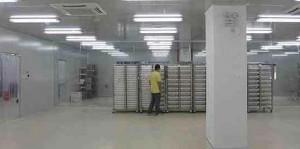بالصور الصين تنتج مليون بعوضة bntpal_1438702925_83