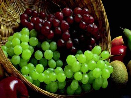 العنب فاكهة الجنة دواء الأرض bntpal_1439573209_64