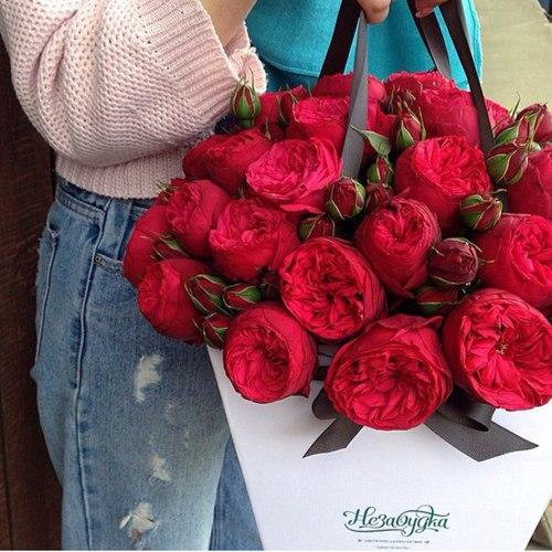 [♥] عآإشقة الورد [♥] bntpal_1441609477_99