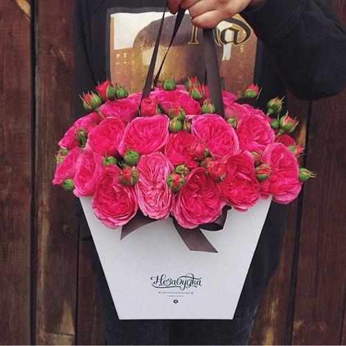 [♥] عآإشقة الورد [♥] bntpal_1441609478_63