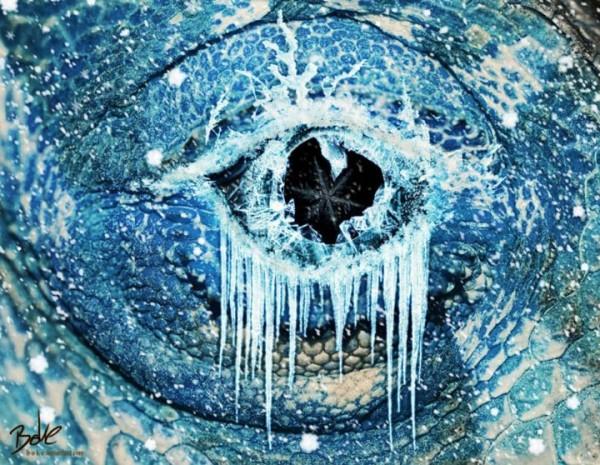 لوحات فنية مدهشة باستخدام الماء bntpal_1441879278_61