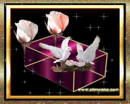 صندوق الحب bntpal_1442084509_40