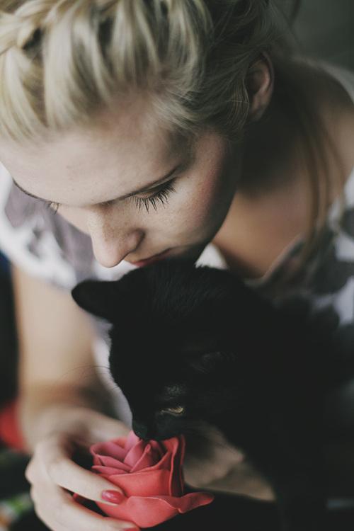 أناآ والقطط قصةة تنتهي bntpal_1443210756_97